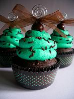 Choco-Mint Faux Cupcake - 01 by CreativeAbubot