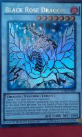White Rose Dragon! by Ultimate--lol