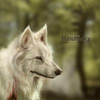 Moro Wolf by Decadia