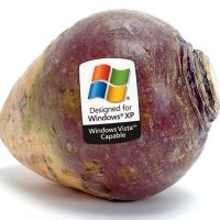 Vista Capable Rutabaga by costermonger