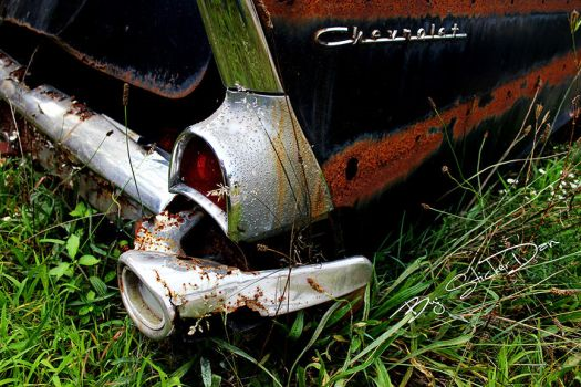 Old Chevy Rotting Away by SD-StickerDan