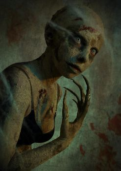 Nosferatu by GallaGadget