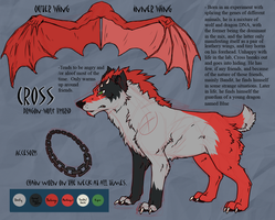 Character Reference: Cross by RedtheGamr