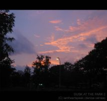 Dusk at the Park 2 by iamheartspeak