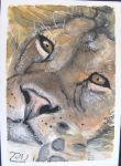 lion atc by nupharHALL