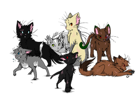 BloodClan Cats by Seek-the-Moon