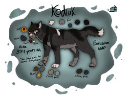 Kodiak Ref -old- by Forever-Wolfy