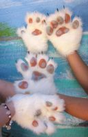 Mottled Pawpads by LilleahWest