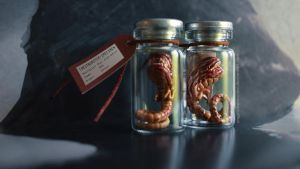 Chestburster preserved by AngelaBermudez