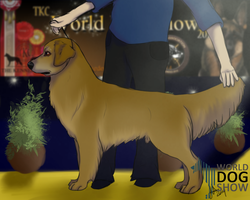 Joey At the March World dog show by joesse