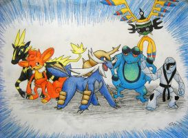 My first team in pokemon Black by Raipeee