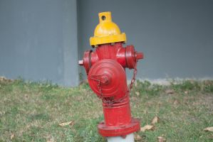 FireHydrant 04 by 2011991