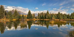 Reflecting at Schwabacher by thankyoujames