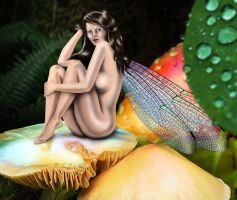 Fairy Full Resolution by jigweed