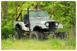 An Old Jeep Sitting In the Weeds by TheMan268