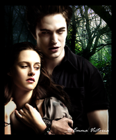 Edward and Bella: Protection by fallenangel-089