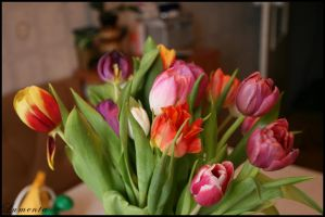 Tulips by Lument