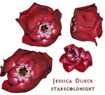Thorn Roses Png By Starscoldnight by StarsColdNight