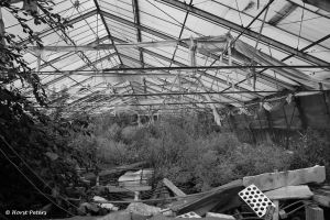 Greenhouse / Gewaechshaus 10 by bluesgrass