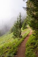 Mountain Trail by gentleworks