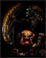 Montage for Alien and Predator by MikeMonaghanPhoto