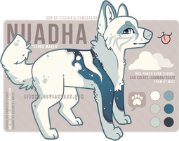[Ref] Nuadha by lithxe