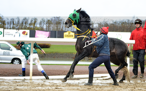 Horse Racing 130 by JullelinPhotography