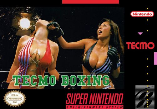 Tecmo Boxing - concept box art by GameScanner