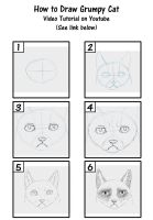 How to Draw Grumpy Cat by SavannaW