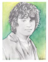 Frodo Baggins by Allichan96