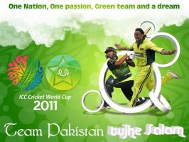 Pakistan World Cup 2011 by hamzahamo