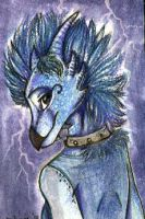 ACEO trade with Goldy by Suane