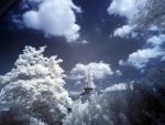 IR - Tower and tree by MaxArceus