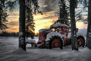 Skidder Sunrise by HeatherWaller-Rivet