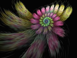 Feathered Flower by eReSaW