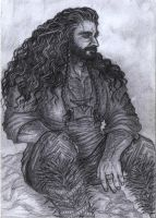 Thorin resting by Marin1233