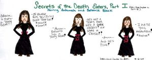 Secrets of the Death Eaters by ramonaquimby