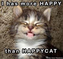 HappyCat by ToygerCat