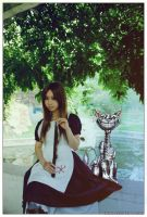 AmericanMcGee'sAlice allice3 by michivvya