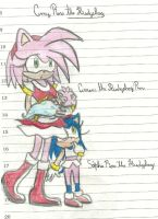 Amy Rose future by RachelGilber