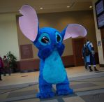 Lilo and Stitch - Stitch by Hyokenseisou-Cosplay