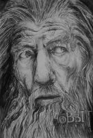 The Hobbit: Gandalf The Grey by bjenssen