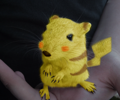 Real Life Pikachu by Puff-Dahh