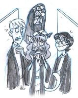 Hermione Used The Wrong Hair by StudioBueno