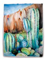 Saguaro Canyon by BCcreativity