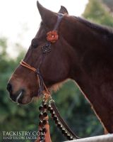 Bedouin Hackamore with Bling by tackistry
