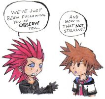 Sora finds out the bad way... by PhoenixG