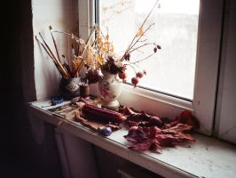 Autumn Nature Morte by saniday