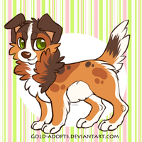 CLOSED| Border Collie Auction by gold-adopts