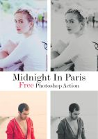 Midnight in Paris Freebie - Photoshop Action by zippy09
